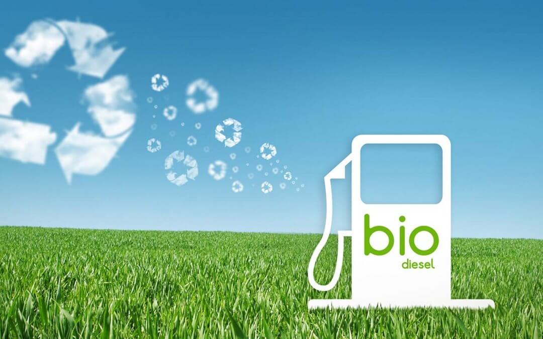 El Biodiesel: Revolución Del Siglo 21 Para El Desarrollo